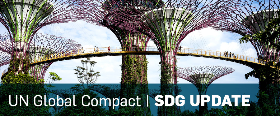 UN Global Compact SDG Update