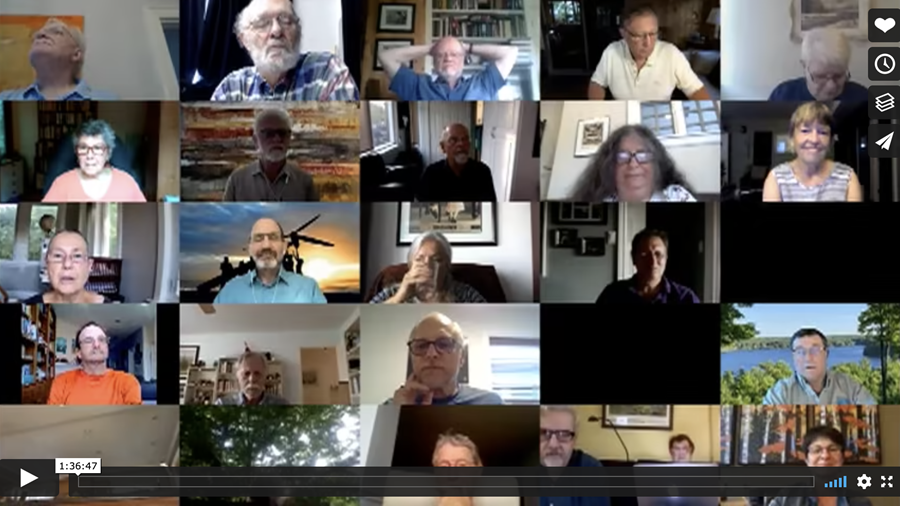 Picture of attendees of SCAN! webinar